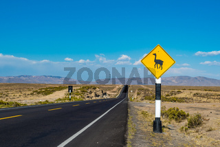 Lama crossing road sign in Peru, South America