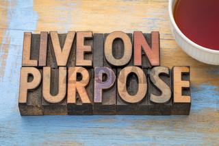 Live on purpose wood type banner