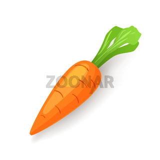 Bright orange carrot with green leaf icon isolated, organic food, fresh vegetable, vector illustration.