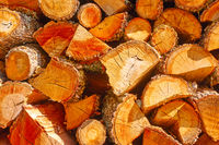Firewood -  chopped wood logs
