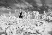Winter in the Erzgebirge - The Hiking Hut