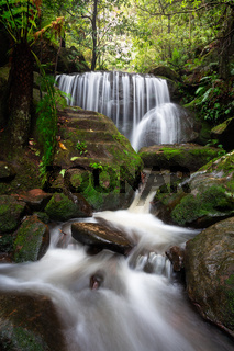 Cascading waterfalls through lush rainforest