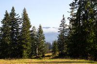 Bavarian Landscape 015. Germany