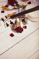 Close view of a white violin dry rose and musical notes on wooden table