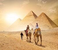Caravan and the Pyramids