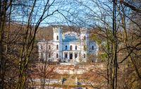 Forest and Sharovsky Palace