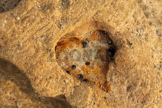 Love Heart eroded rock
