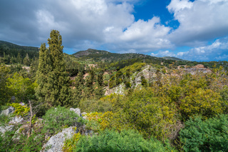 Green countryside in the Askos region of Zante