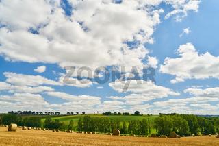 Landschaft Hintergrund mit Getreidefeld und Himmel