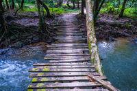 Wooden bridge over the river, Thailand