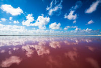 Salt pink lagoon in Las Coloradas, Yucatan, Mexico