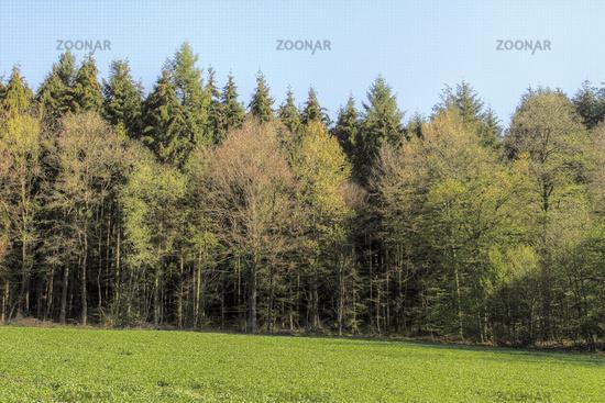 Landscape around the Heppenstein