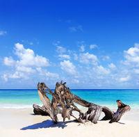 Malediven-Impressionen
