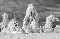 Winter scenery in the Erzgebirge Mountains