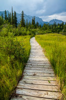 A boardwalk along a hiking trail in Bow Valley Provincial Park, Alberta