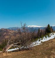 Early spring Carpathian mountains