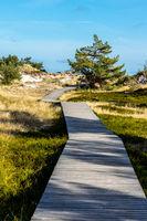 Naturschutzgebiet an der Ostsee -38.jpg