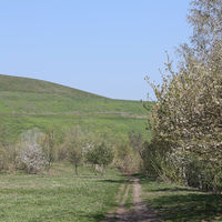 Path to the Arkenberge hill in Berlin in spring