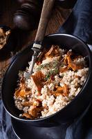 Kaszotto- polish risotto from barley groats with mushrooms