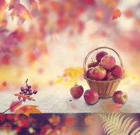 red apples in a basket and autumn leaves