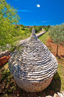 Olive tree field and traditional Istrian Kazun stone hut view