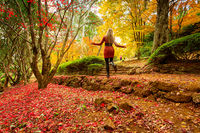 Woman enjoying a walk in an Autumn garden