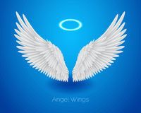 White angel wings and shining nimbus, realistic feathers