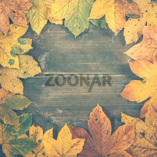 Herbstlicher Hintergrund mit Laub, Blättern und Holz, quadratisch