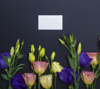flowers Eustoma Lisianthus and empty paper card