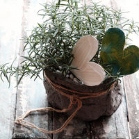 Rosemary pot with heart