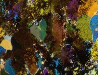 Mineralien2.jpg