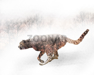 Double exposure of running cheetah and trees