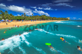 Bodyboard Waikiki Hawaii