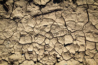 due to lack of rain, the earth dried up with cracks, climate change