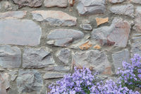 Old Stone Wall With Flowers Background Texture
