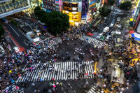 shibuya crossing viewed from top