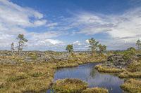 Moorland on the Atlantic island Tustna