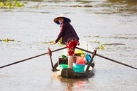 Vietnamese Woman on a Boat