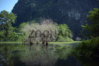 Trang An landscape with water, trees and limestone mountain. Vietnam