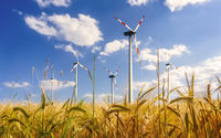 Wind energy and agriculture