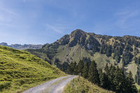 Hiking trail with a view of Mount Arvigrat, Nidwalden, Switzerland