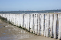 Coastal protection by wooden groynes on the sandy beach, in the background Vlissingen