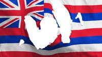 Ragged Hawaii state flag