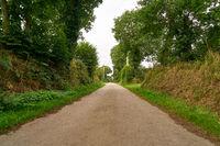 Leere Landstraße nach vorne