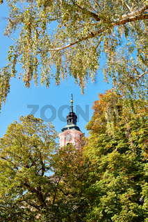 Kirchturm Basilika Birnau zwischen Laubbäumen