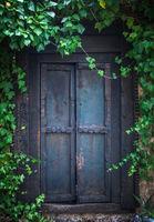 Overgrown Secret Garden Door