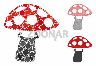Mushroom Composition Icon of Ragged Parts