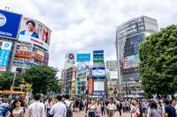 shibuya crossing day view