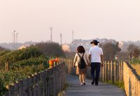 Middle-Aged Couple on the Pathway