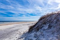 Vacation Beach Sunny Dunes Grass Tall Nature Tropical Weather Beautiful Sand Shore